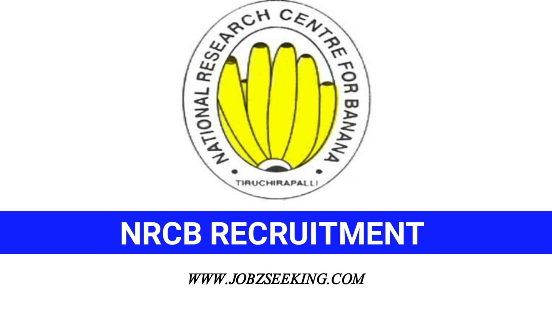 nrcb trichy recruitment 2020 1 young professional posts